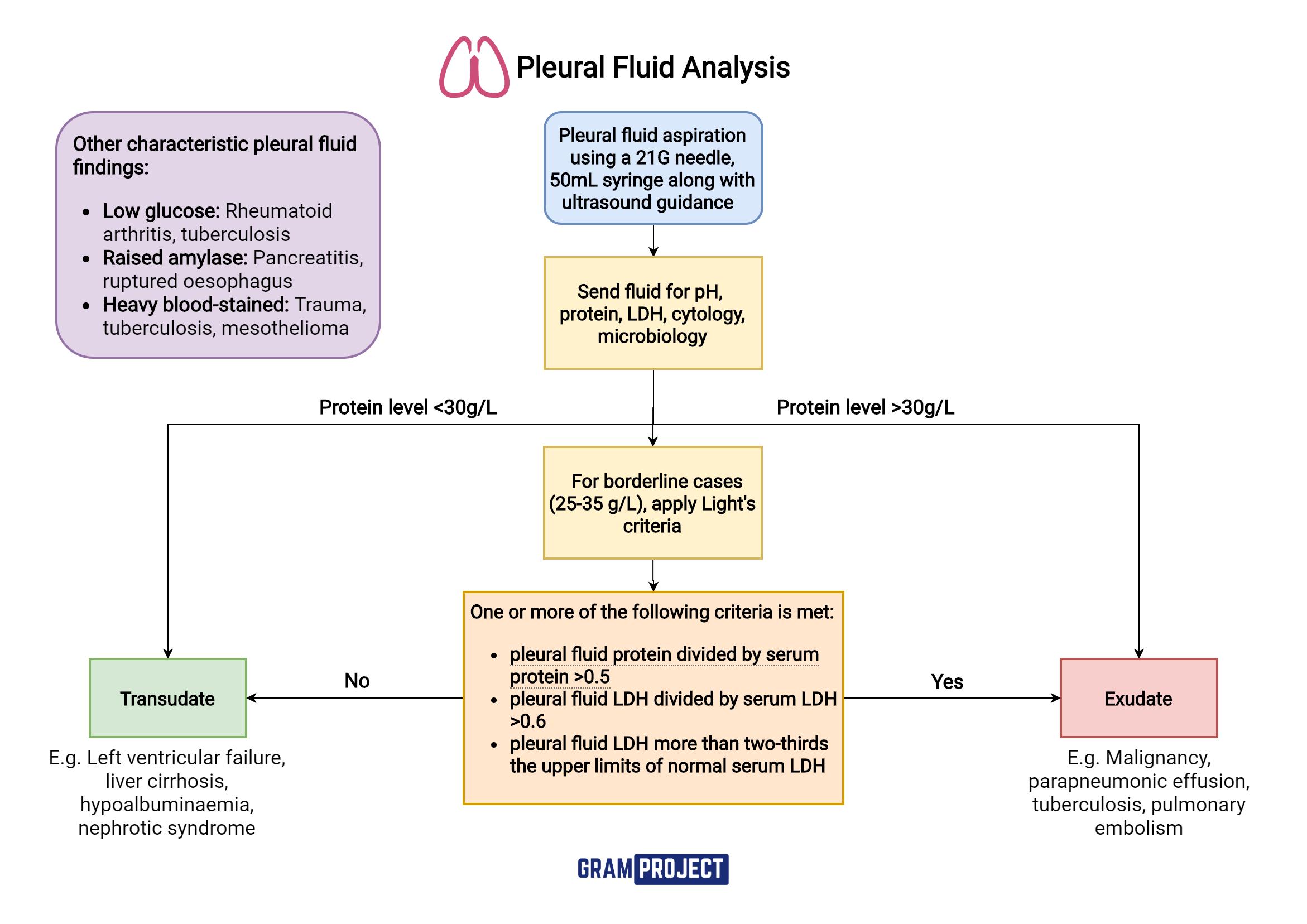 Pleural fluid analysis flowchart using Light's criteria created by Gram Project